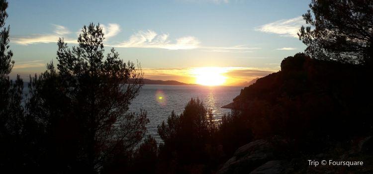 Opcina Makarska
