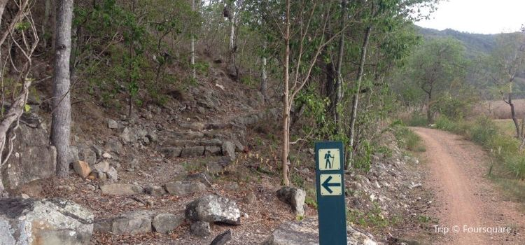Townsville Town Common Conservation Park2