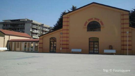 Biblioteca Comunale Alfonso Ruggiero