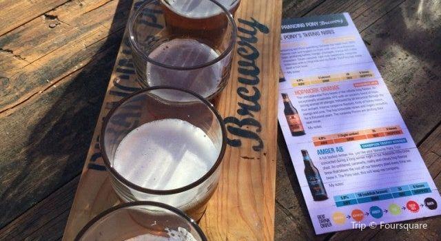 Prancing Pony Brewery2