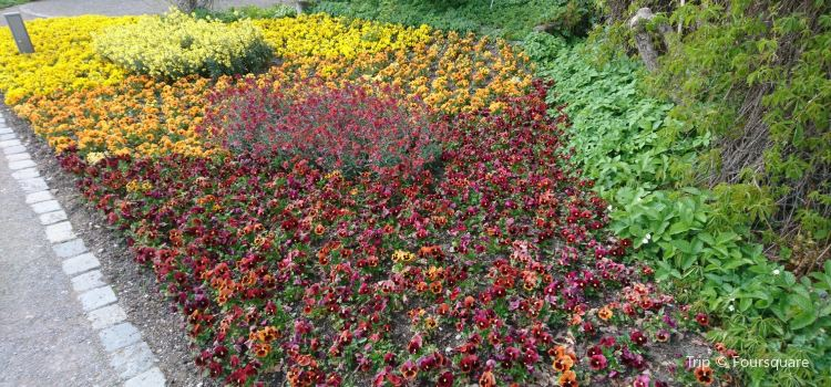 Botanischer Garten - Japan Garten2