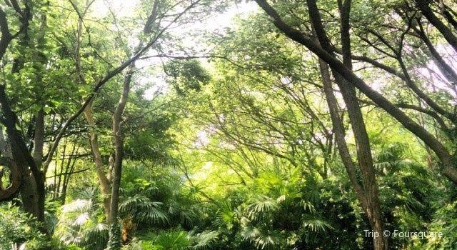 Il Giardino della Valle2