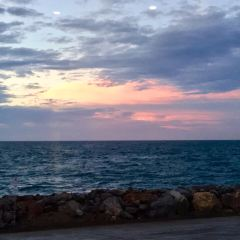 Penneshaw Beach User Photo