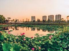 Meihekoushi Zhangbai Mountain Botanical Garden User Photo
