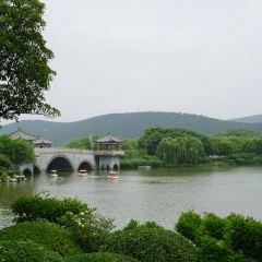 小南湖景區用戶圖片