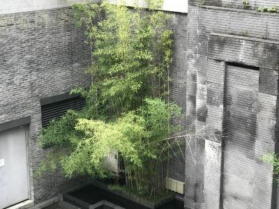 Hangzhou Shangcheng Cultural Center