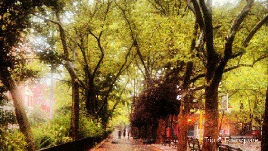 Sara D Roosevelt Park