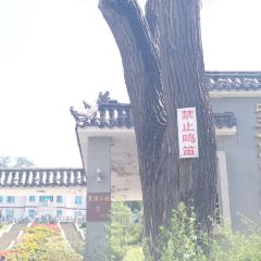 望溪公園用戶圖片