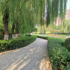Baoding Martyrs' Cemetery User Photo
