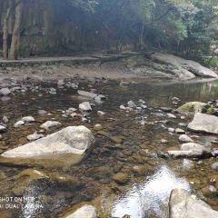 Lingshi (Spirit Rock) Mountain National Forest Park User Photo