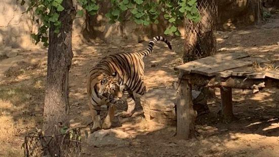 연태남산공원동물원