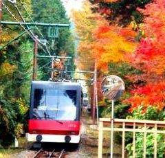 箱根登山鐵道用戶圖片