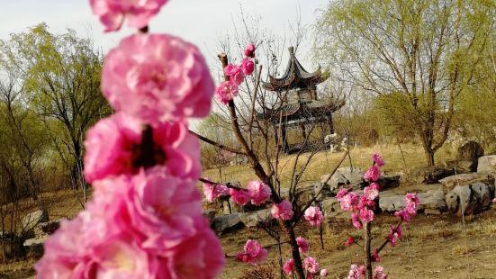 Caoxueqin Park