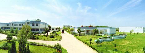 Wang's Bee Garden