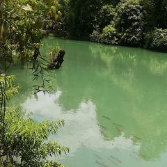 Tonggu Bridge User Photo