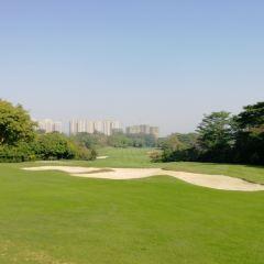 Gentle Uptown Golf Club User Photo