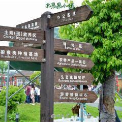 米果果小鎮用戶圖片