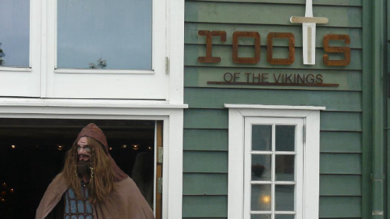 Roots of the Vikings