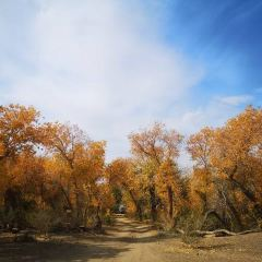 白楊河大峽谷用戶圖片