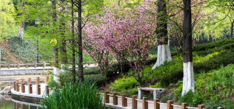 칭다오 식물원