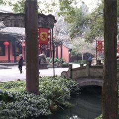 ShuangLiu LaoMa TuTou(Wenshuyuandian) User Photo