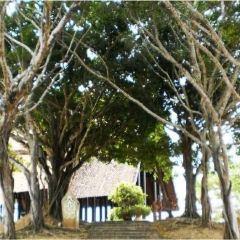 Langkawi Legend Park User Photo