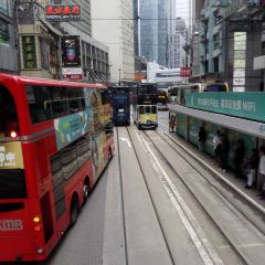 香港電車叮叮車用戶圖片