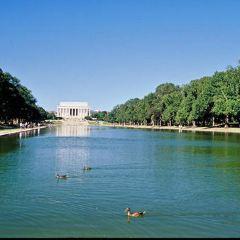 Potomac Park, Washington, DC User Photo