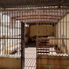 Maitland Gaol User Photo
