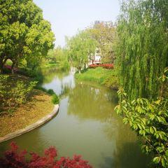 Fengpu Four Seasons Ecological Garden (West Gate) User Photo