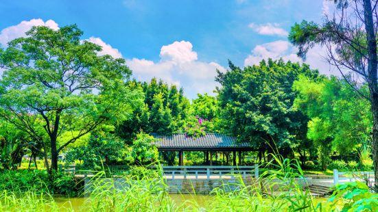 Dashahe Wetland Park