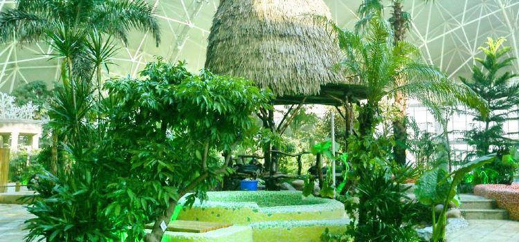 Feishi'er Seaview Hot Spring Resort, Fisher Island