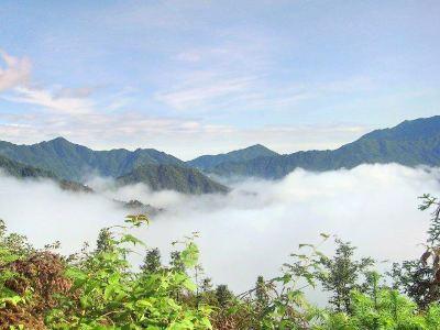舜皇山國家森林公園