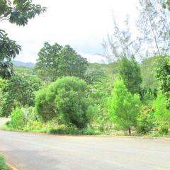 Montefiore Hill User Photo