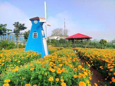몽환샹산 방향문화원