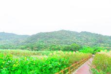 黄山鲁森林公园-广州-doris圈圈
