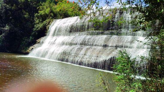 Huangjing Prehistoric Forest
