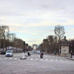 Citroen Champs-Elysees Showroom User Photo