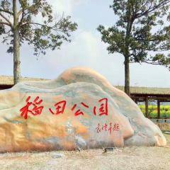 稻田公園用戶圖片