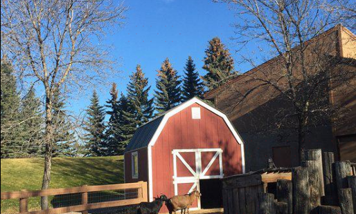 Saskatoon Forestry Farm Park & Zoo