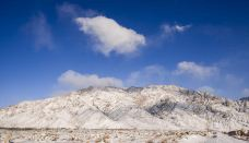 贺兰山国家狩猎场-阿拉善-M29****1262