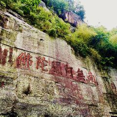 대불사 관광명소 여행 사진