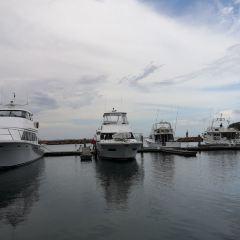 Port Stephens User Photo