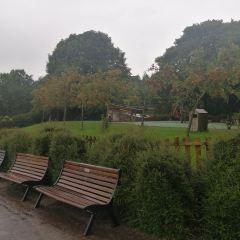 Williamson Park User Photo