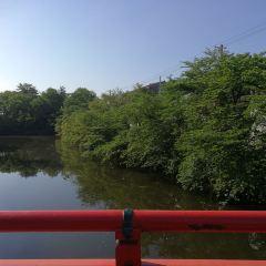 射水神社用戶圖片