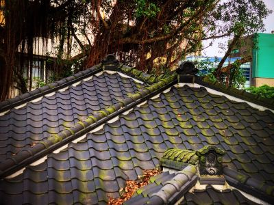 타다이키치 고택