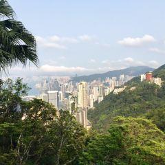 Victoria Peak User Photo