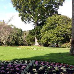 Winter Garden Auckland Domain用戶圖片