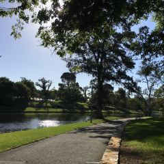 River Torrens Linear Park Trail User Photo