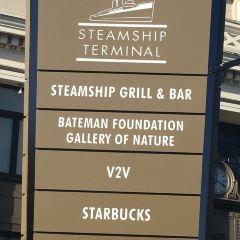 Steamship Terminal用戶圖片